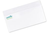 Picture of #10 - 2 PMS Spot Color Envelopes - Flat Print