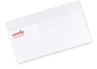 Picture of #10 One Standard Spot Color Envelopes - Raised Print