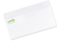 Picture of #10 One PMS Spot Color Envelopes - Raised Print