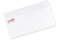 Picture of #10 Two Standard Spot Color Envelopes - Flat Print