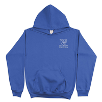 Picture of PULLOVER HOODIE EMBROIDERED