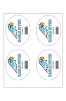 """Picture of 4"""" x 5"""" Custom Full Color Oval Tech Decal, Gloss, 4 per Sheet"""